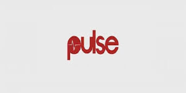 Digital Sales Strategist Job at pulse